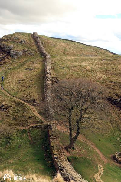 31 March 2017 - Hadrian's Wall © Ian Foster / fozimage